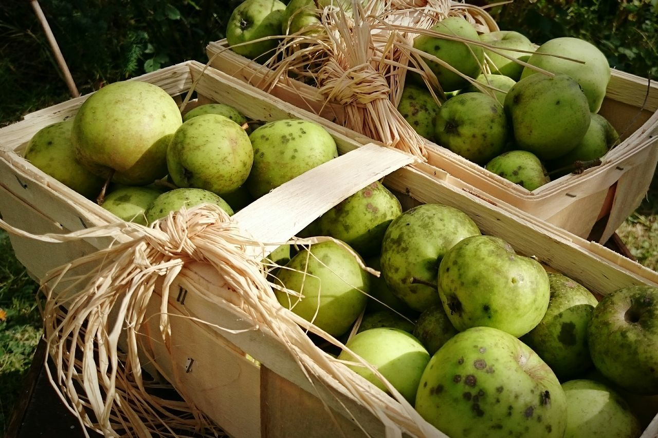 Close-Up Of Fruits In Box Outdoors