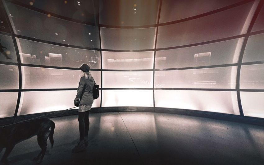 Rear view of woman with dog standing in modern building