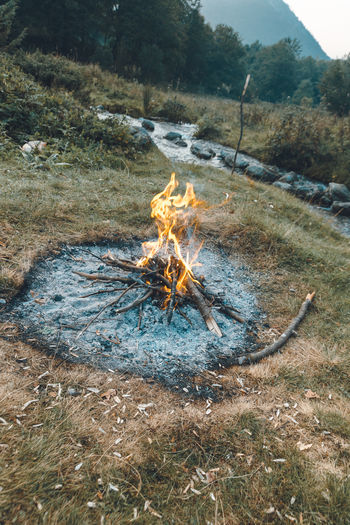 High angle view of bonfire on field in forest