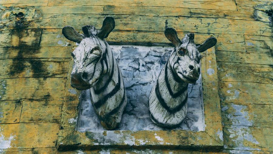 Close-up of animal representation on wall