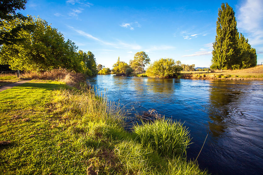 Australia New South Wales  Tumut River Beauty In Nature Blue Cloud - Sky Day Grass Green Color Growth Lake Landscape Nature No People Outdoors Scenics Tranquil Scene Tranquility Tree Tumut Water