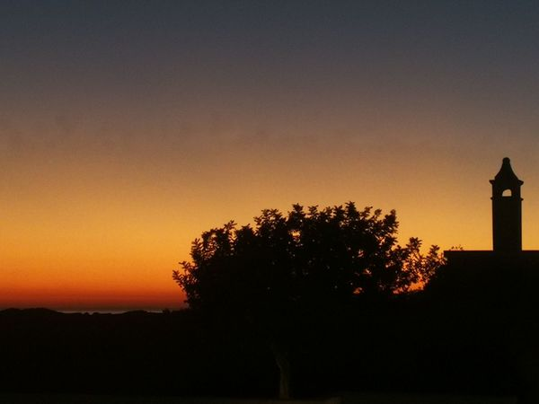 """Sunset at Masseria Bagnara"" Masseria Bagnara Puglia South Italy Puglia Italy🇮🇹 Italy Sunset No Filter No Filter, No Edit, Just Photography Nofilter Lizzano (Ta) Masseria Bagnara Nature Scenics Outdoors Growth"