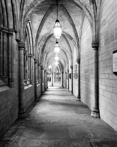 The way Architecture The Way Forward Direction Arch Built Structure Building Diminishing Perspective Arcade No People Architectural Column Empty Lighting Equipment Corridor