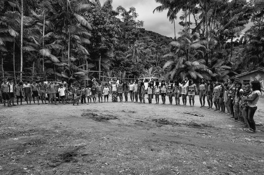 Guaranis da Reserva Indígena Rio Silveira dançam e entoam cantos sagrados para se comunicar com Inhanderú. Dance Indian Indian Culture  Nature Rio Silveira Indian Reservation Travel Photography Aldeia Guarani Black And White Crowd Curumim Guarani Indian Guarani Village Guarani Woman Indigenous Culture Indigenous Dance Indigenous Reservation Indigenous Woman Large Group Of People Leisure Activity Lifestyles Nature Praia De Boraceia Real People Reserva Indigena Rio Silveira Tree