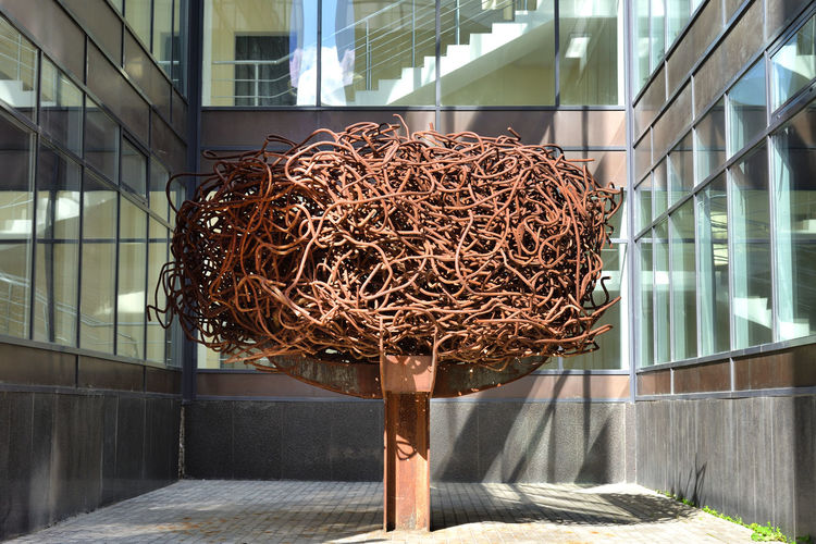 Iron Tree City Modern Urban Moscow Shade Outdoors Europe Russia Brown Eastern Europe Metal Installation No People Built Structure RU643_MOSCOW_AK RU643_RUSSIA_AK