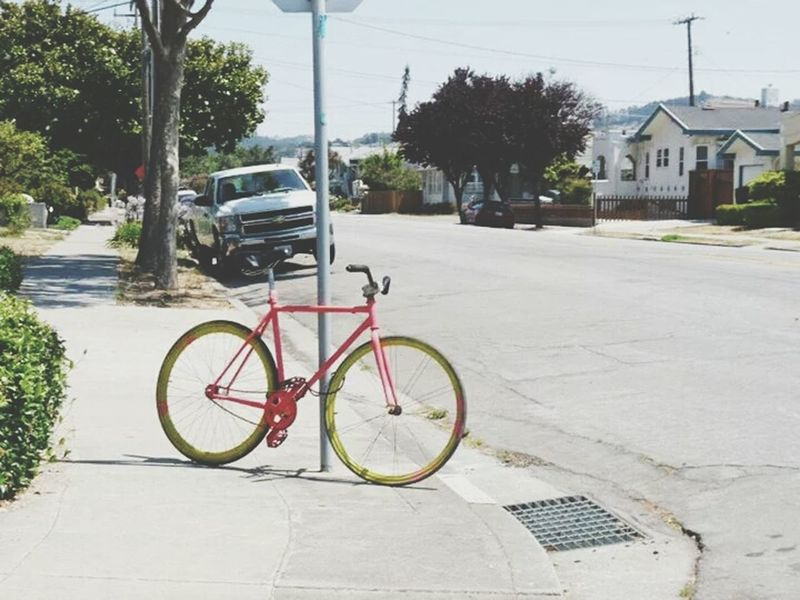 hot days call for pink bike rides. Bicycle Adventure Is Out There