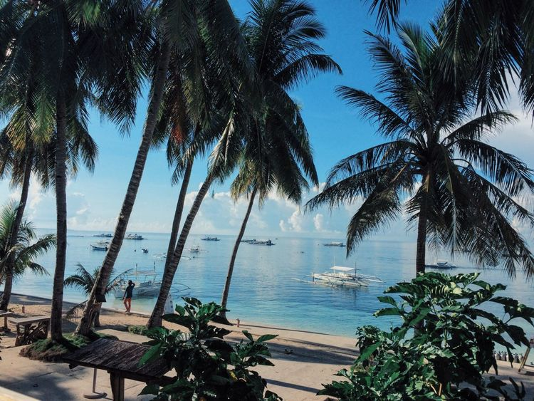 Beautiful morning at Panglao 😍 Philippines Beachphotography Bohol Philippines Tropical Climate Happy Day Vacation Time Traveling Summertime