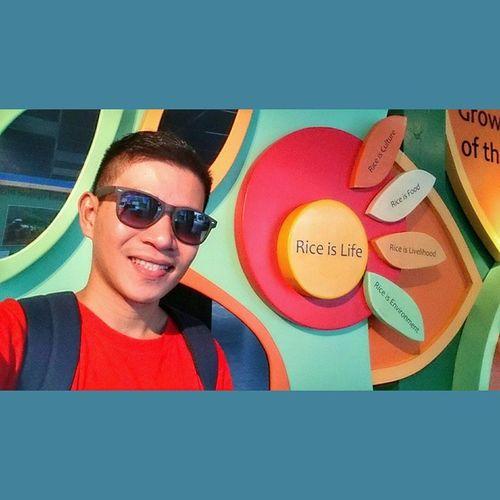 Rice is life 🌍🌾 📷 . . . Irri Rice Riceworld Museum ican xperia xperiadetails selfie themanansala