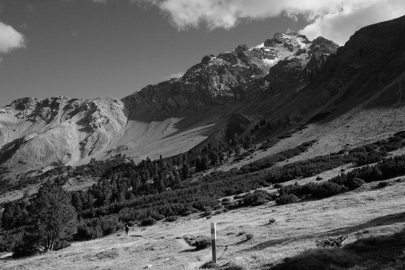 Way Home Alpine