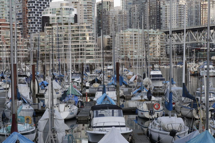 High Angle View Of Sailboats Moored On Harbor Against Buildings In City