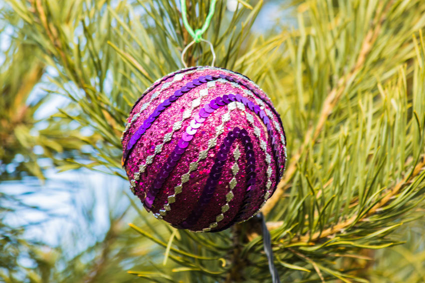 Background, Black, Branch, Card, Festive, Fir, Spruce, Toy, Year, Ornament Red, Ball, Reflection, Colo Celebration, Party, Ceremony Christmas, New, Year, Tree, Background, Holiday, Ball, Red, Black, Decoration, Decor, Top, Spruce, Season, Celebration, Winter, Xmas, Fir, Branch, Green, Cone, Card, Festive, Toy, Ornament Cone, Decor, Design, Interior, Lamp, Luxury, Architecture, Art, Decoration, Classic, White, Glow, Chandelier, Energy, Crystal, Ornate, Background, Electricity, Dark, Victorian, Electric, Expensive, Hanging, Restaurant, Ornamented, Xmas, Fashion, Decorative, Shi Decoration, Holiday, Green, Trees, Way, High, Nature, Landscape, Road, Beautiful, Park, Summer, Grass, Plant, Garden, Leaf, Color, Path, Beauty, Life, Outdoor, Natural, Environment, Forest, Growth, Foliage, Happy, Wood, Castle, Branch, Walk, Woodland, Footpath, Floras, Holiday, Vacation, Summer, Beach, Hat, Sea, Ocean, Sunglasses, Seashells, Trip, Travel, Tourist, Sunny, Time Off, Carry On, Suitcase, Bag, Luggage, Towel, Swimming Essentials, Ready, Preparing New, Season, Nobody, Tree, Tøp, Twenty One Pilots, Josh Dun, Tyler Joseph, Clique, Skeleton Clique,|-/ Winter, Cold, Icy, Calm, Cool, Xmas,pumpkin, Lights,Christmas, Christmas Lights
