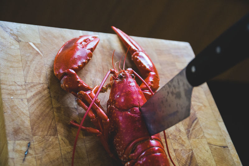 got it Food And Drink Knife Lobster Seafood Close-up Crustacean Cutting Board Focus On Foreground Food Food And Drink Foodporn Freshness Healthy Eating High Angle View Indoors  Kitchen Knife Knife No People Raw Food Ready-to-eat Red Still Life Table Wellbeing Wood - Material