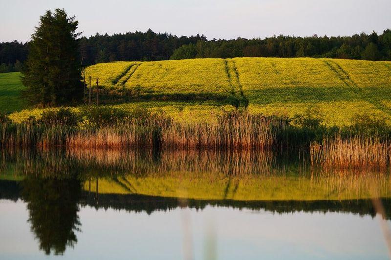 Nature Poland