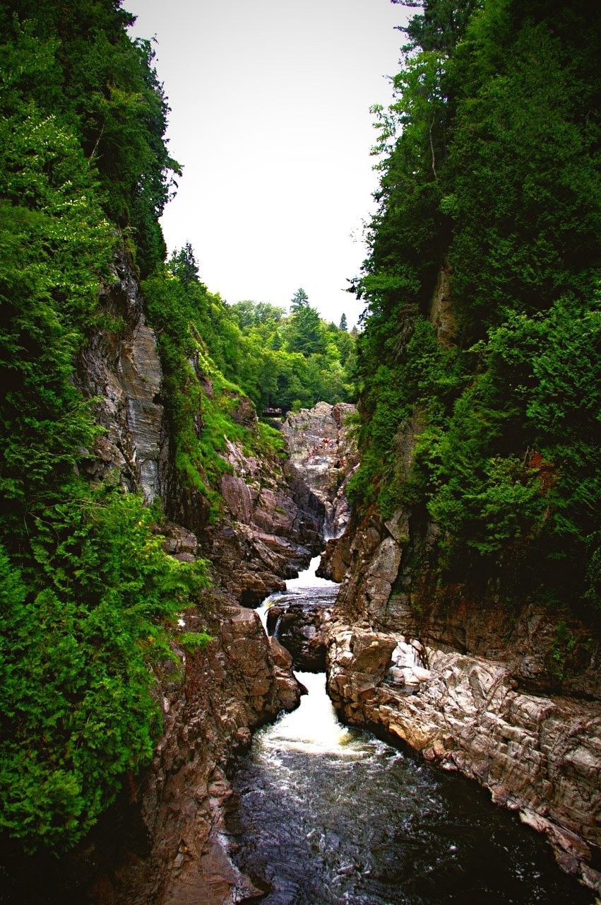 nature, tree, beauty in nature, tranquil scene, tranquility, scenics, rock - object, non-urban scene, water, no people, river, idyllic, forest, outdoors, day, green color, plant, travel destinations, growth, sky