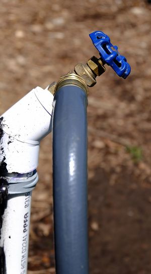 Guzzling hose, lol. Blue Drinking Outdoors Close-up Spigo Hose Irrigation Equipment Day Focus On Subjects Depth Of Field Blurred Background Photography