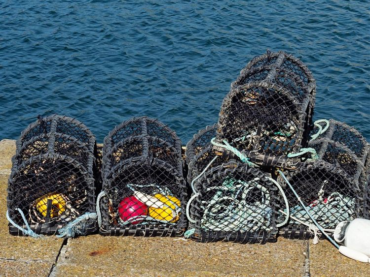 • Lobster for dinner? • Lobster Pots Water Sea Land Beach Nature High Angle View Day No People Outdoors Fishing Industry Fishing Tranquility Sunny