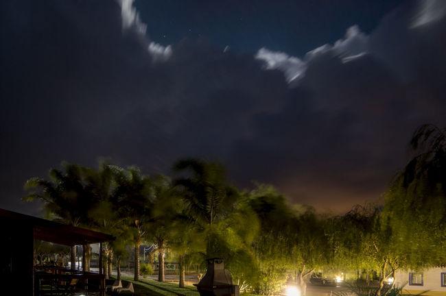 Night Tree Illuminated Sky Cloud - Sky Outdoors Palm Tree Nature Storm Cloud Zambujeira Do Mar Beauty In Nature Popular Photos Photographer Beautiful Nature Tree Popular Photos Naturephotography