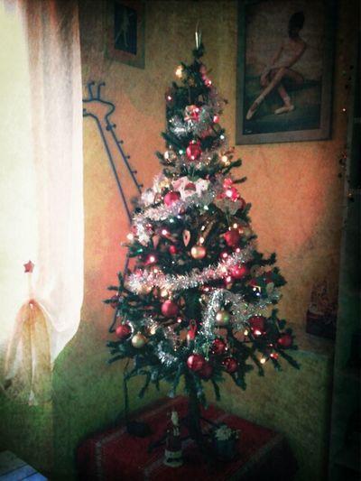 Christmas Tree With My Boyfriend