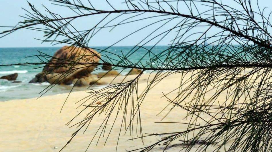 Terengganu Malaysia Beach Relaxing Enjoying Life