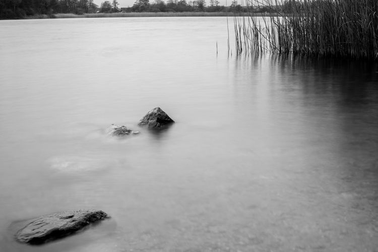Abtsdorfer See Blackandwhite Day Lake Nature Outdoors Tranquil Scene Tranquility Water Monochrome Photography