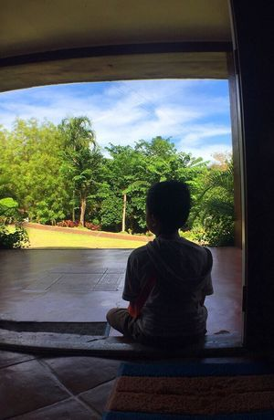 Sitting Sky One Person Tree Cloud - Sky Rear View Lifestyles Day Childhood Nature Indoors  Scenery Summer Leisure Activity Relaxation Blue Sky