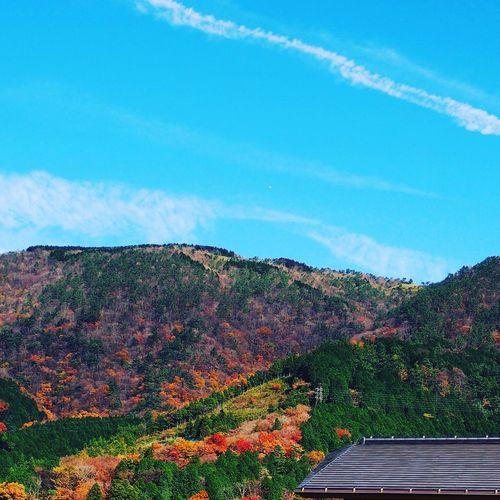 旅写真 Travel_photo 箱根