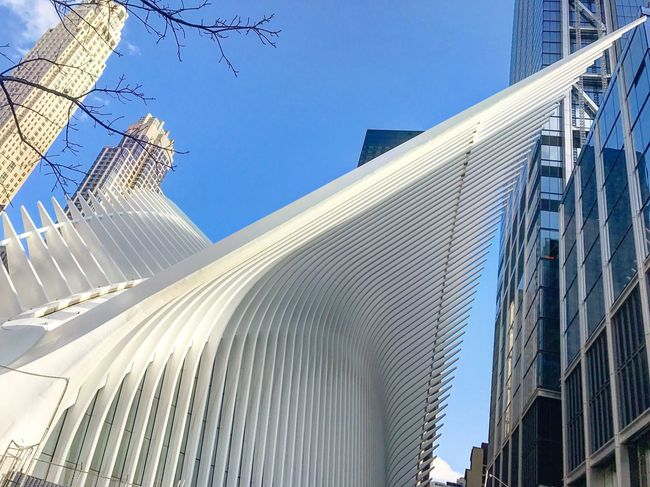 Oculus Oculus Oculus NY WorldTradeCenter 911memorial New York City New York NYC NYC Street Photography Architecture Built Structure Low Angle View Building Exterior