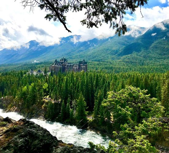 Mountain Tree Beauty In Nature Mountain Range Scenics Nature Tranquil Scene Growth Sky Outdoors Day Cloud - Sky Tranquility Lush Foliage Landscape Green Color No People Water Forest Banff Springs Hotel IPhone 7 Plus IPhoneography