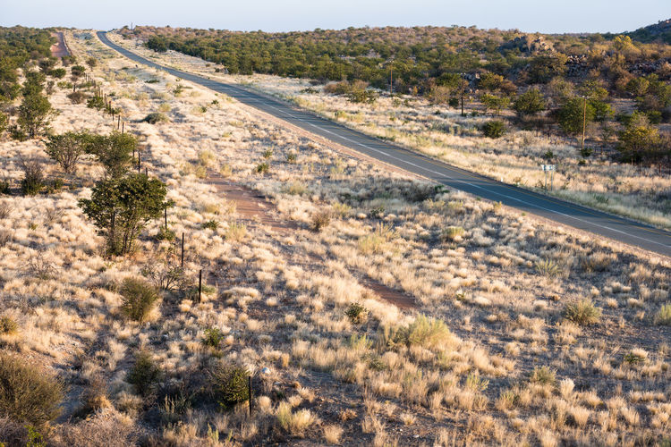 High angle view of road amidst trees on field