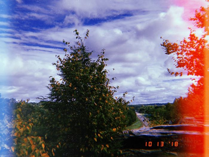 Fall Connecticut New England  Cloud - Sky Plant Sky Tree Nature Growth Beauty In Nature Outdoors Scenics - Nature