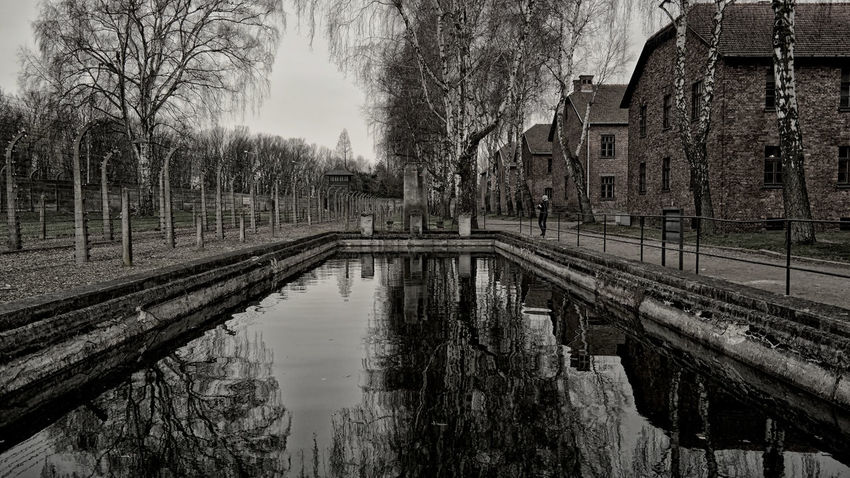 Architecture Auschwitz  Auschwitz Memorial Diminishing Perspective Exceptional Photographs EyeEm Gallery From My Point Of View Holocaust Memorial Melancholic Landscapes Melancholy Photography Pool Reflection Taking Photos Travel Photography Traveling Tree Water Water Reflections