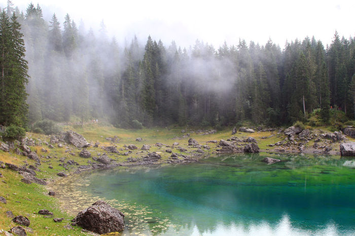 Betterlandscapes Water Tranquil Scene No People Naturelovers Nature_perfection Mountainlake Lake View Forest Photography Forest Foogy Morning Foggy Lake Foggy Fog Dolomites South Tyrol Südtirol Clouds Südtirol Nature Photography Nature Karersee EyeEmNewHere Dolomites, Italy Dolomites Cloudscape Blue Lake