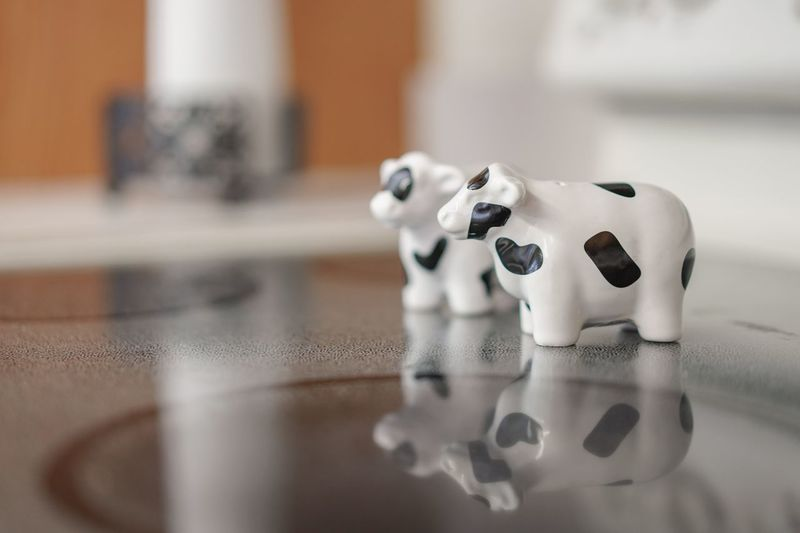 Salt and pepper Cows Still Life Indoors  Representation Table No People Close-up Toy Mammal Selective Focus Focus On Foreground White Color Ceramics