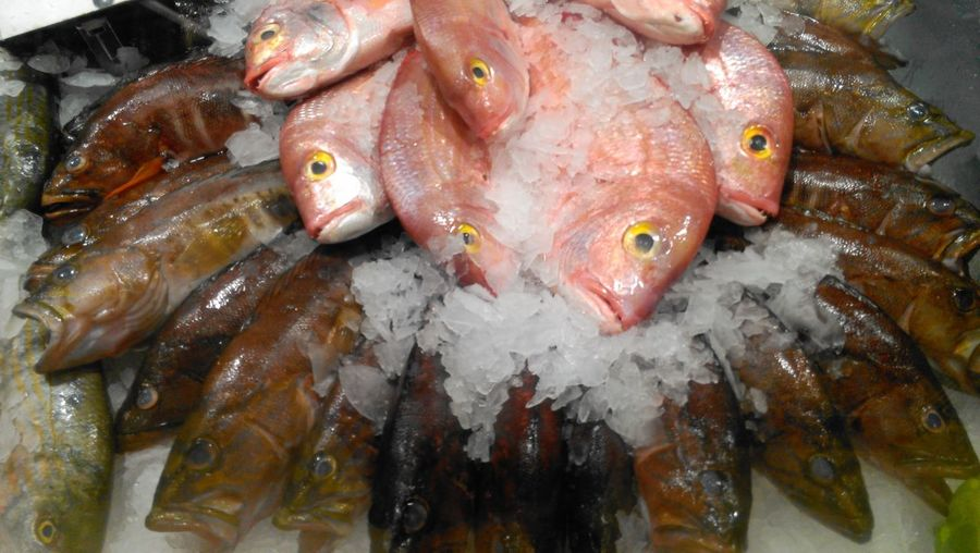 High angle view of fishes at market