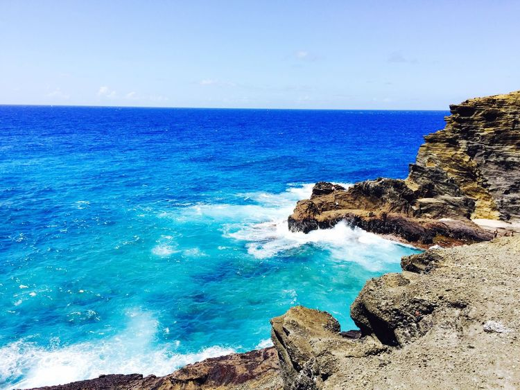 Hawaii Honolulu, Hawaii Beach Beachphotography Beach Photography Beach Life