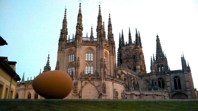Egginplaces Burgos Architecture Built Structure Sky Clear Sky Building Exterior Tree No People City Outdoors Day Clock Tower Break The Mold Art Is Everywhere Neighborhood Map The Architect - 2017 EyeEm Awards The Street Photographer - 2017 EyeEm Awards