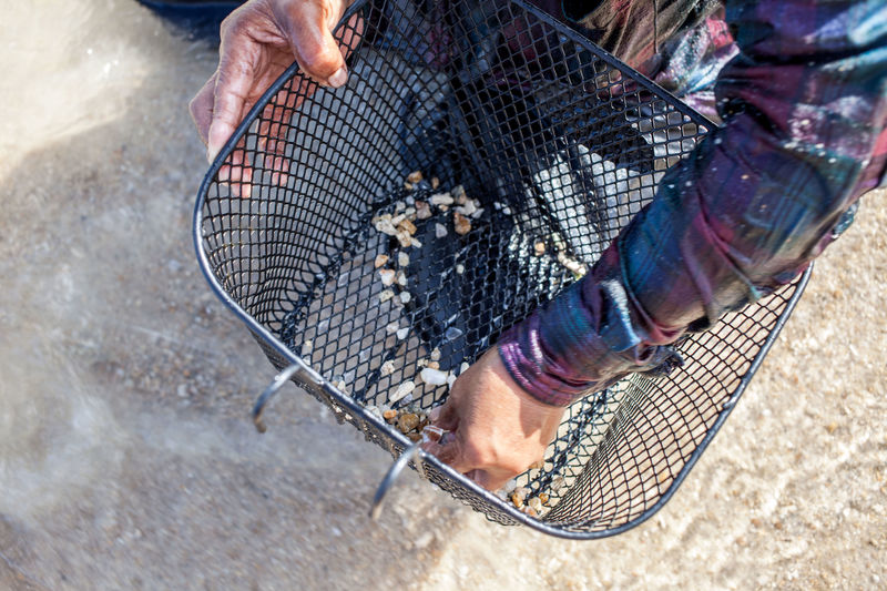 High angle view of person collecting seashell in metallic basket at beach