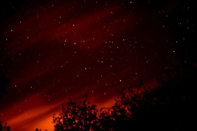 Wildlovers Nightphotography Stars & Dreams Nikon D5100  50mm Treesandstars FreeSpirit ✌ Night Sky Breizhnight