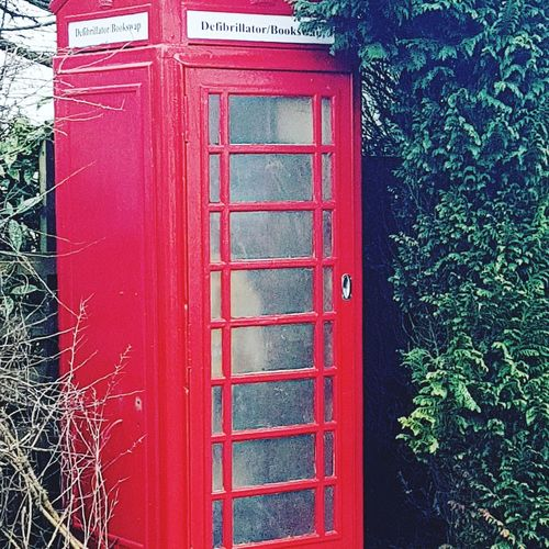 Tree Red Telephone Booth Communication Close-up Architecture