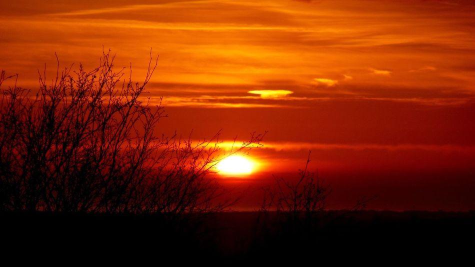 Eyeem Silhouette - EyeEm Landscape - Beautiful Sunset - Light & Dark - Creative Light And Shadow - EyeEm Nature Lover - Natural Beauty