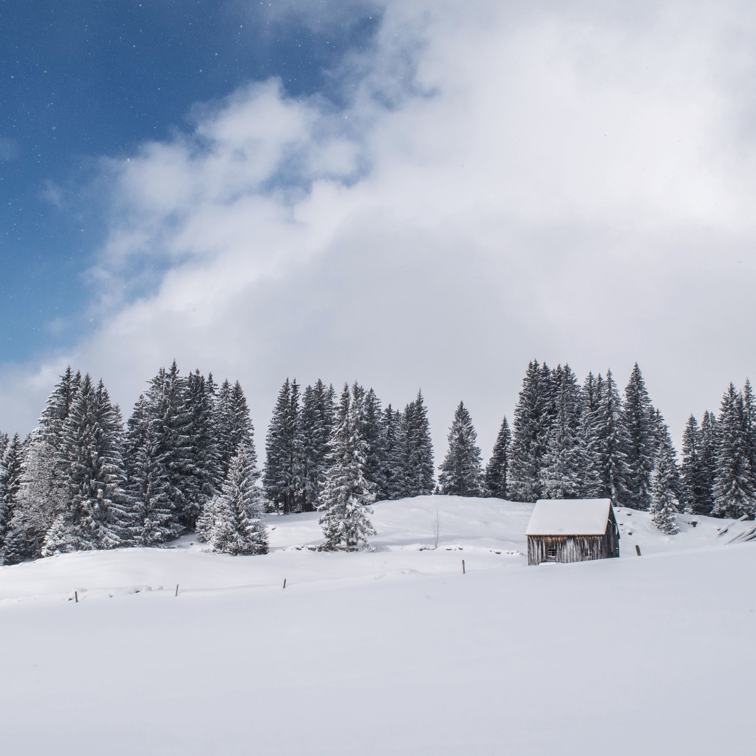 snow, winter, cold temperature, season, weather, tree, landscape, covering, sky, tranquility, tranquil scene, field, nature, white color, beauty in nature, scenics, covered, cloud - sky, snow covered, white