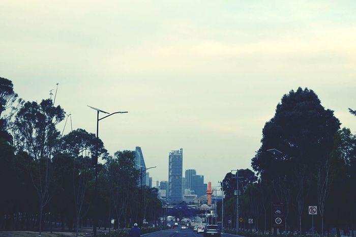 Miles Away City Urban Skyline Cityscape Day City Life Tree Cosmopolitan