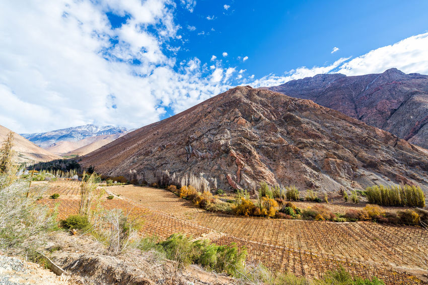 View of the Elqui Valley where a lot of pisco is produced in Chile Agriculture Chile Countryside Destination Elqui Farming Field Hill Idyllic La Serena Landscape Majestic Mountain Nature Pisco Scenery Scenics South America Tourism Travel Valley Vicuña Vicuña, Chile Vineyard Wine