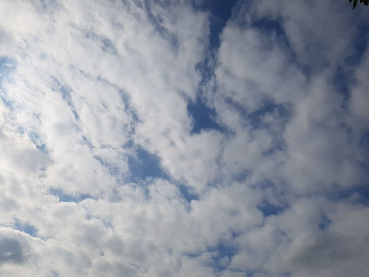 sky Beauty In Nature Low Angle View Scenics Tranquility Tranquil Scene Backgrounds Sky Cloudscape Full Frame Majestic Nature Cloud - Sky Heaven White Color Sky Only White Cloud Idyllic Environment Day
