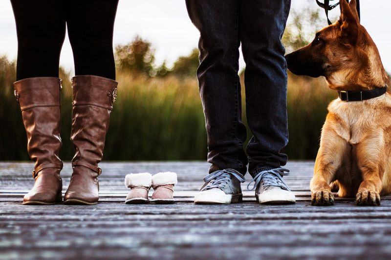 Low section of family with baby shoes and dog