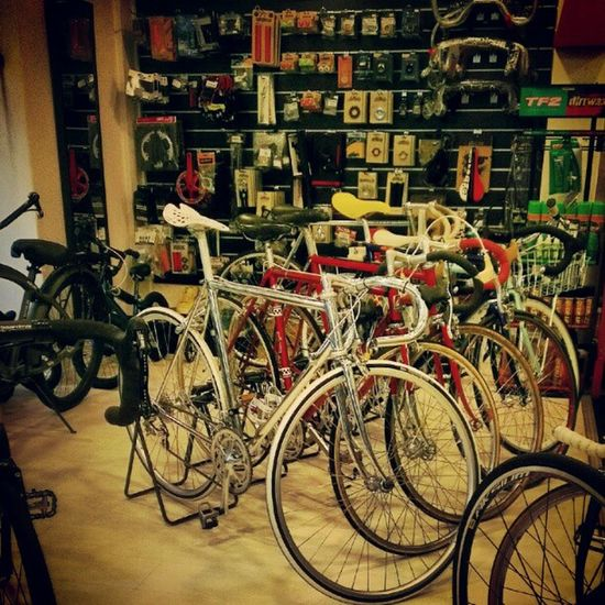 Classic styles. Bicycles Italian Fixed Singaporeslinging