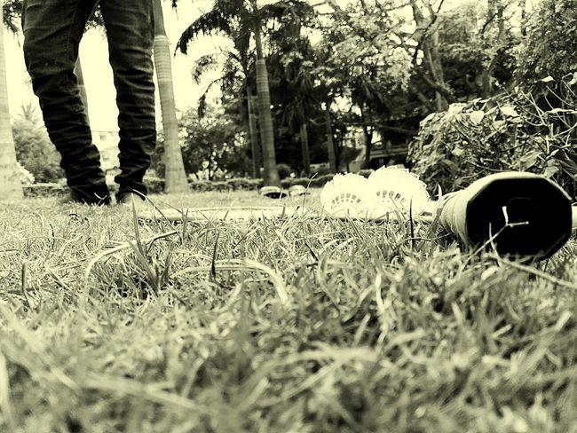 Beautiful Black And White Photography Trees Garden Pastel Power @sekharchinta, Hyderabad India