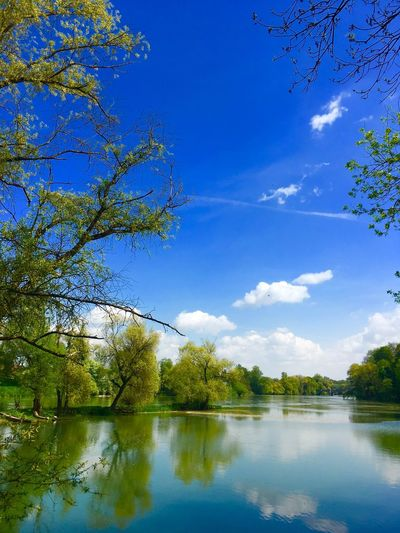 At the Danube ( Donau) river... Neuburg Neuburg An Der Donau Holiday EyeEm Gallery Germany Godiscoversummer Siamdiscovery Danube Donau Travel Travel Destinations River Water Tree Sky Plant Reflection Lake Beauty In Nature Nature Scenics - Nature Tranquility Outdoors Cloud - Sky Idyllic