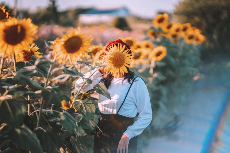 Woman covering face with sunflower on field