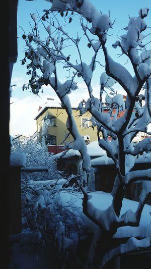 Turkey Izmit Karların Manzarası
